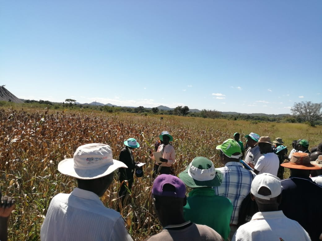 UFCL attended the field days inZimbabwe